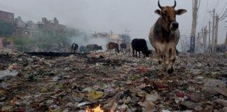 polluted cities faridabad